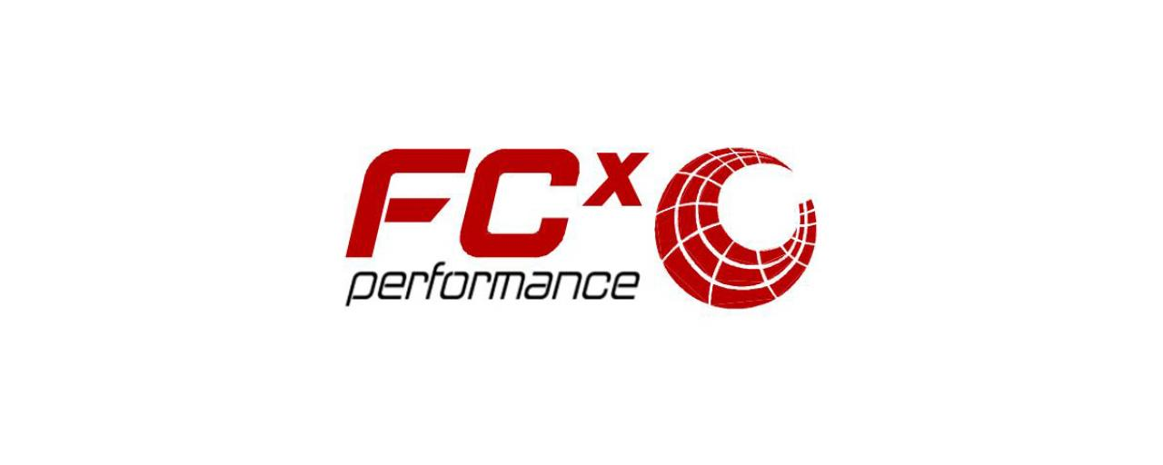 FCX_1